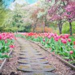 Piękny oraz zadbany ogród to zasługa wielu godzin spędzonych  w jego zaciszu podczas pielegnacji.